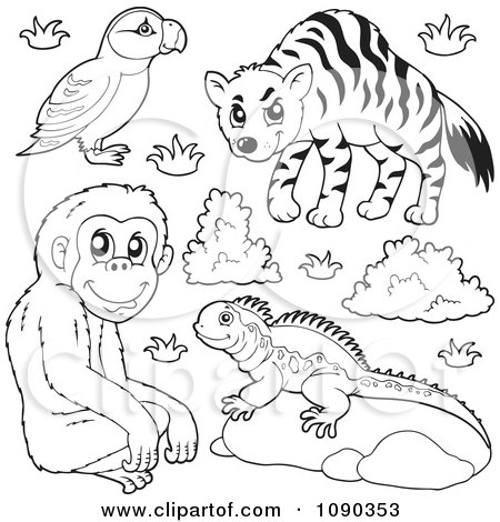 Royalty Free Stock Illustrations of Zoo Animals by