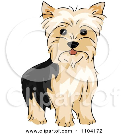 Clipart Illustration of a Friendly Yorkshire Terrier Dog