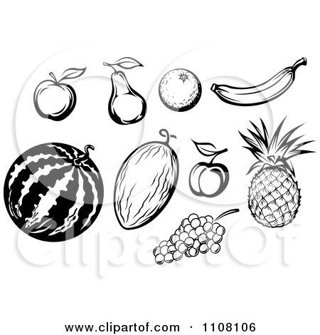 Bean Fruit Diagram, Bean, Free Engine Image For User