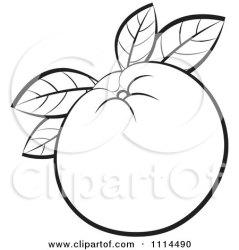 orange clipart fruit outline clip leaves illustration outlined royalty vector lal perera panda clipartpanda cliparts tree regarding notes categories clipartof