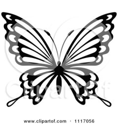 butterfly clipart vector graphics royalty graphic illustration rf illustrations tradition sm