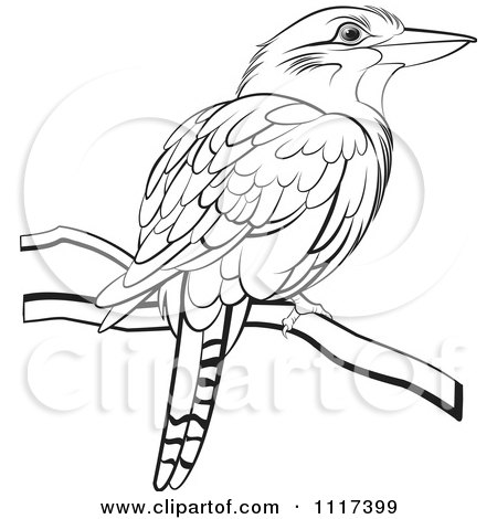Clipart Of A Black And White Perched Kookaburra Bird