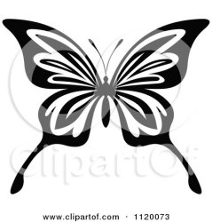 butterfly vector clipart royalty illustrations graphics rf tradition sm