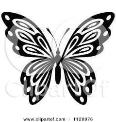 butterfly clipart vector clip outline illustration illustrations butterflies royalty flowers rf drawing clipartof template stencil tradition sm graphics discover panda