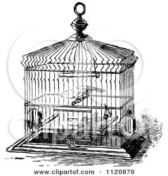 cage bird clipart illustration pet vector poster print stand antique prawny retro royalty prints wall clipartof