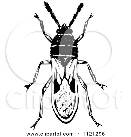 Clipart Of A Retro Vintage Black And White Chinch Bug