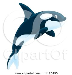 Cartoon Of A Happy Jumping Orca Killer Whale Royalty Free Clipart by Alex Bannykh #1125435