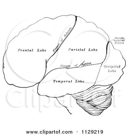 Cartoon Of A Black And White Retro Diagram Of The