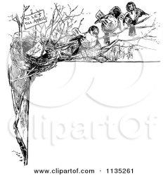 bird nest retro clipart border illustration royalty vector prawny eggs