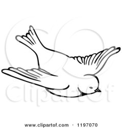 bird flying clipart illustration owl vector royalty prawny mascot kid regarding notes