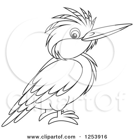 Royalty Free RF Kingfisher Clipart Illustrations