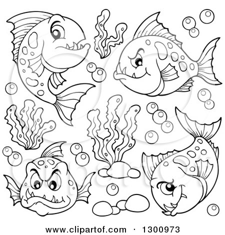 Outline Clipart of Black and White Carnivorous Piranha