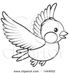 bird flying cartoon clipart vector birds drawing illustration clip royalty bannykh alex line illustrations getdrawings collc0056