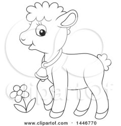 baby lamb cute sheep cartoon clipart sheared lineart illustration royalty bannykh clip alex vector