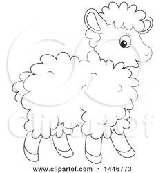 sheep lamb cartoon cute baby clipart illustration lineart royalty vector sheared bannykh alex clip