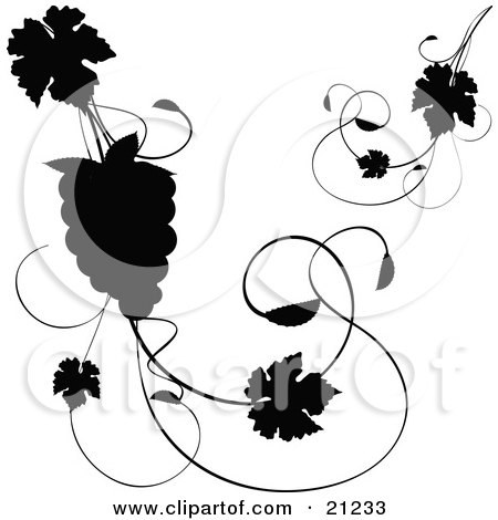 Clipart Illustration of a Silhouetted Grapevine With