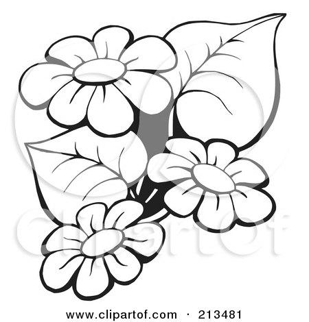 clip art flowers outline