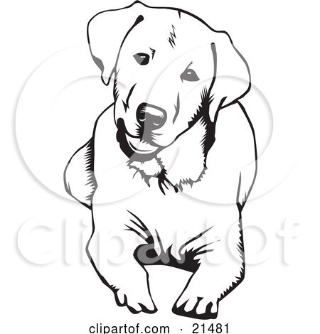 Clipart Illustration of a Friendly Yellow Labrador Dog