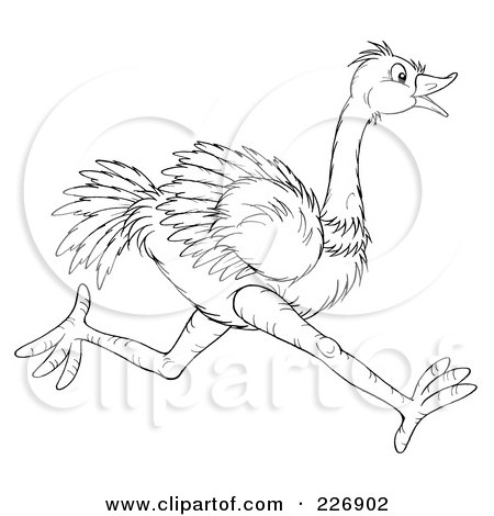 Coloring Page Outline Of A Running Ostrich Posters, Art