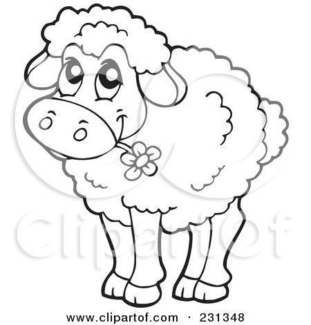 Sheep Outline