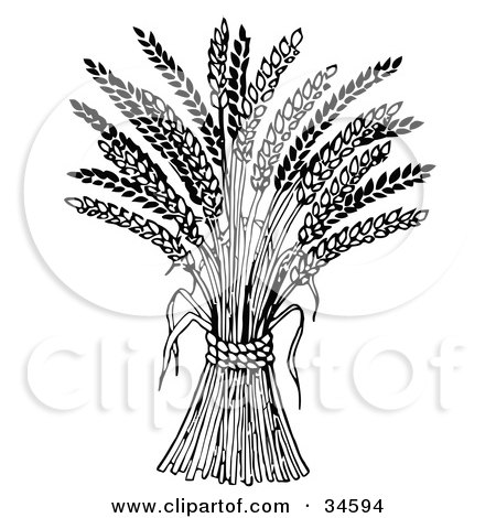 Clipart Illustration of Wheat Bound By Rope by C Charley