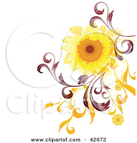 nature background of bright sunflower