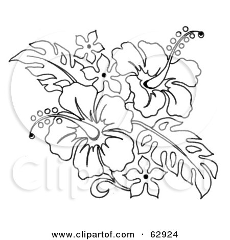 Hibiscus Colouring Pages