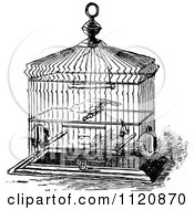 Grayscale Whimsical Empty Bird Cage Posters, Art Prints by