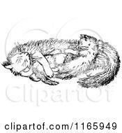 Royalty-Free (RF) Cat Nap Clipart, Illustrations, Vector