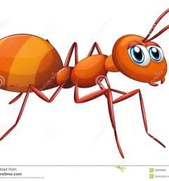 ant clipart  [ 1300 x 1049 Pixel ]