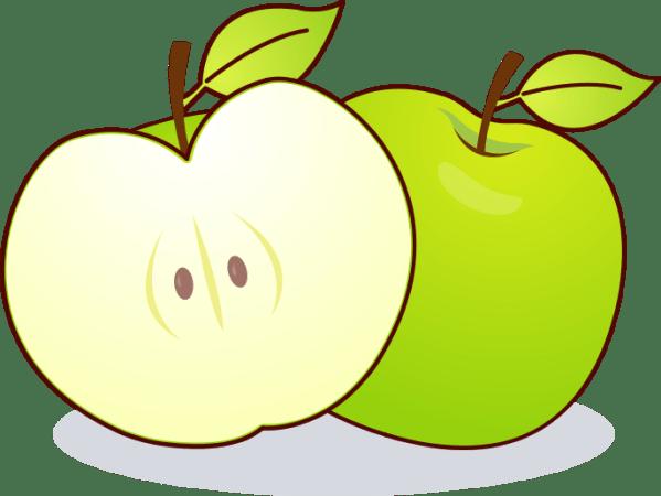 apple clip art black and white