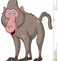 baboon clipart  [ 1130 x 1300 Pixel ]