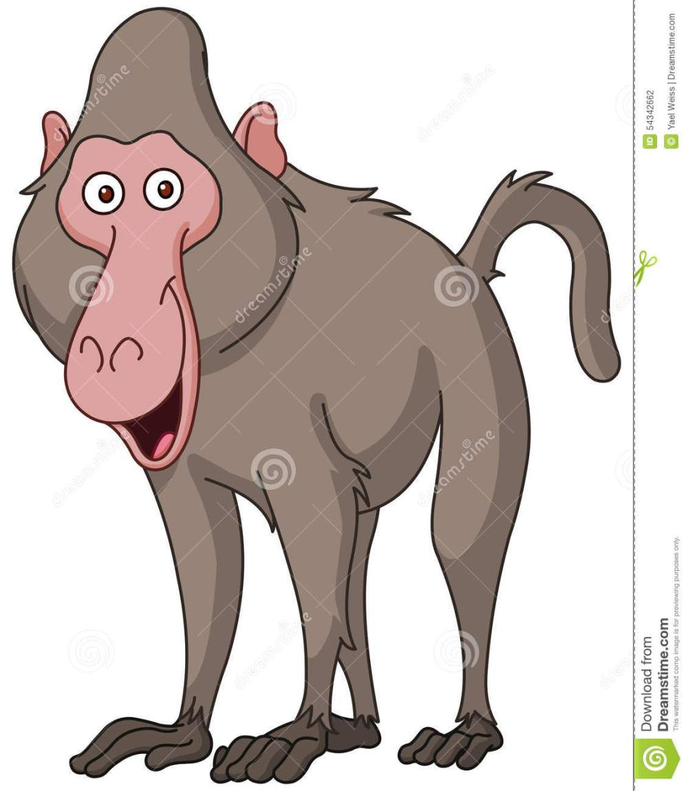 medium resolution of baboon clipart