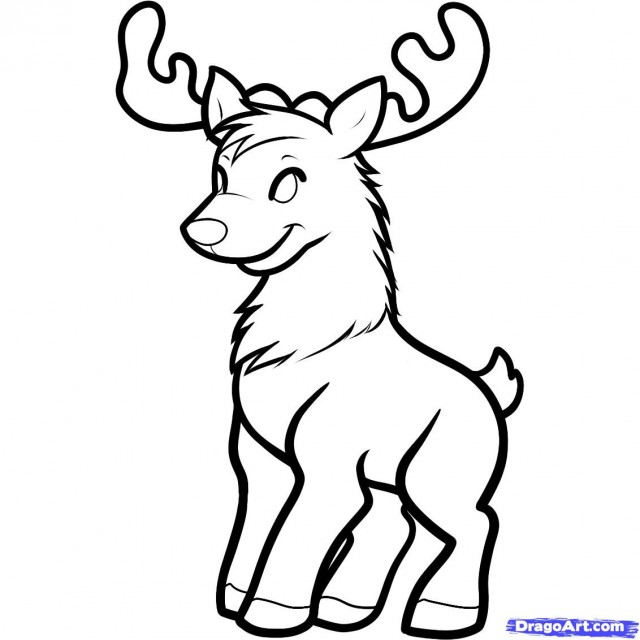 Gallery How To Draw A Deer Easy