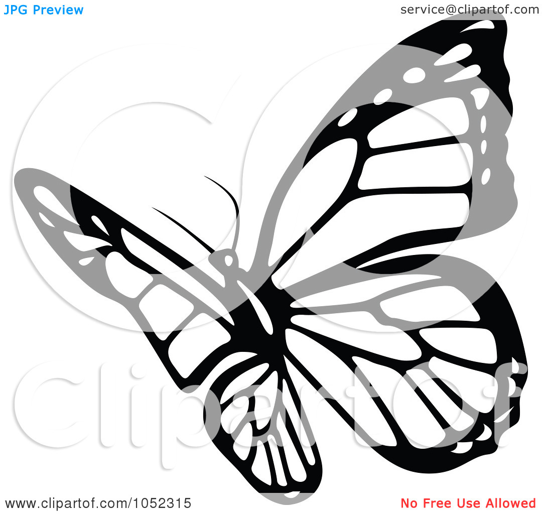Butterfly Flying Outline Clipart Clipart Panda