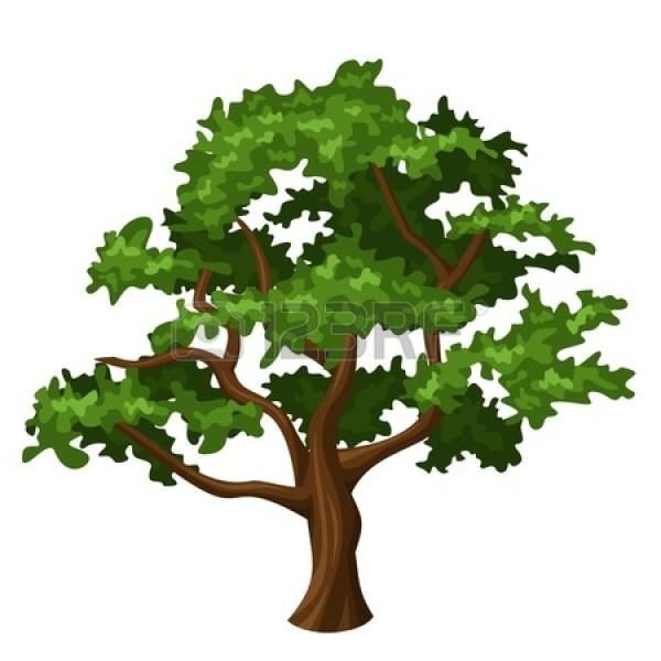 Oak Tree Clipart Panda - Free