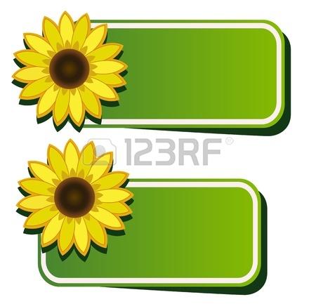 sunflower border clipart