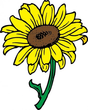 black and white sunflower clip