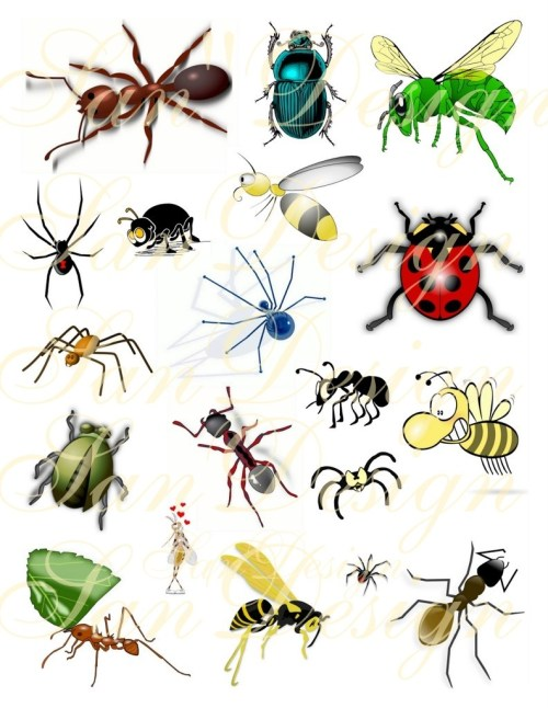 small resolution of bug clipart