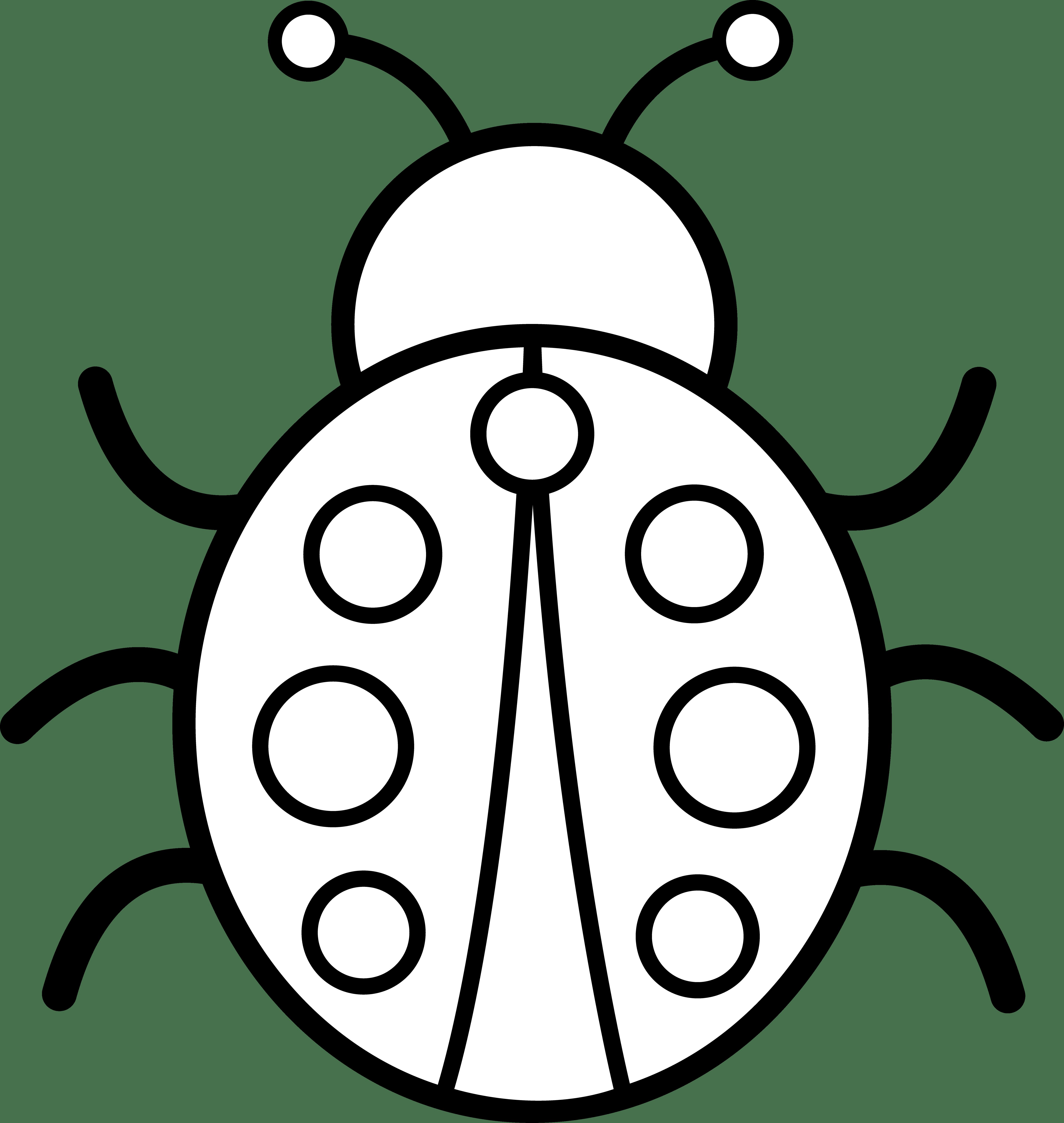 Bug 20clipart Clipart Panda