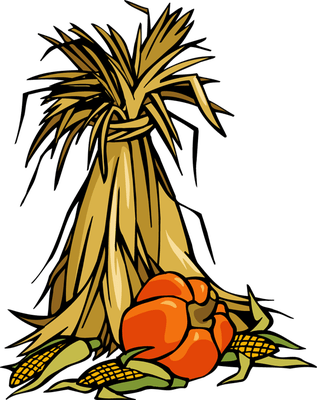 corn stalk bundle clipart. clipart