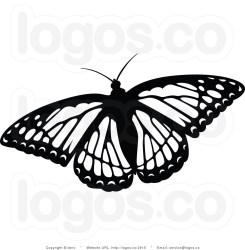 butterfly clipart flying clip fancy monarch painted clipartpanda royalty dero 2815 logos rocks clipground printing screen websites reports projects these