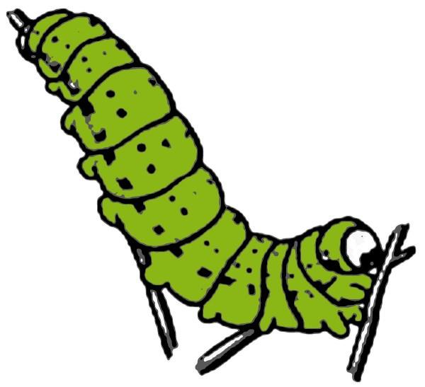 caterpillar leaf clipart
