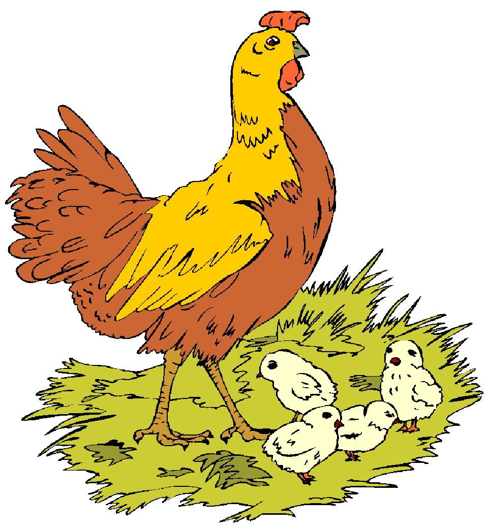 medium resolution of chicken egg clipart