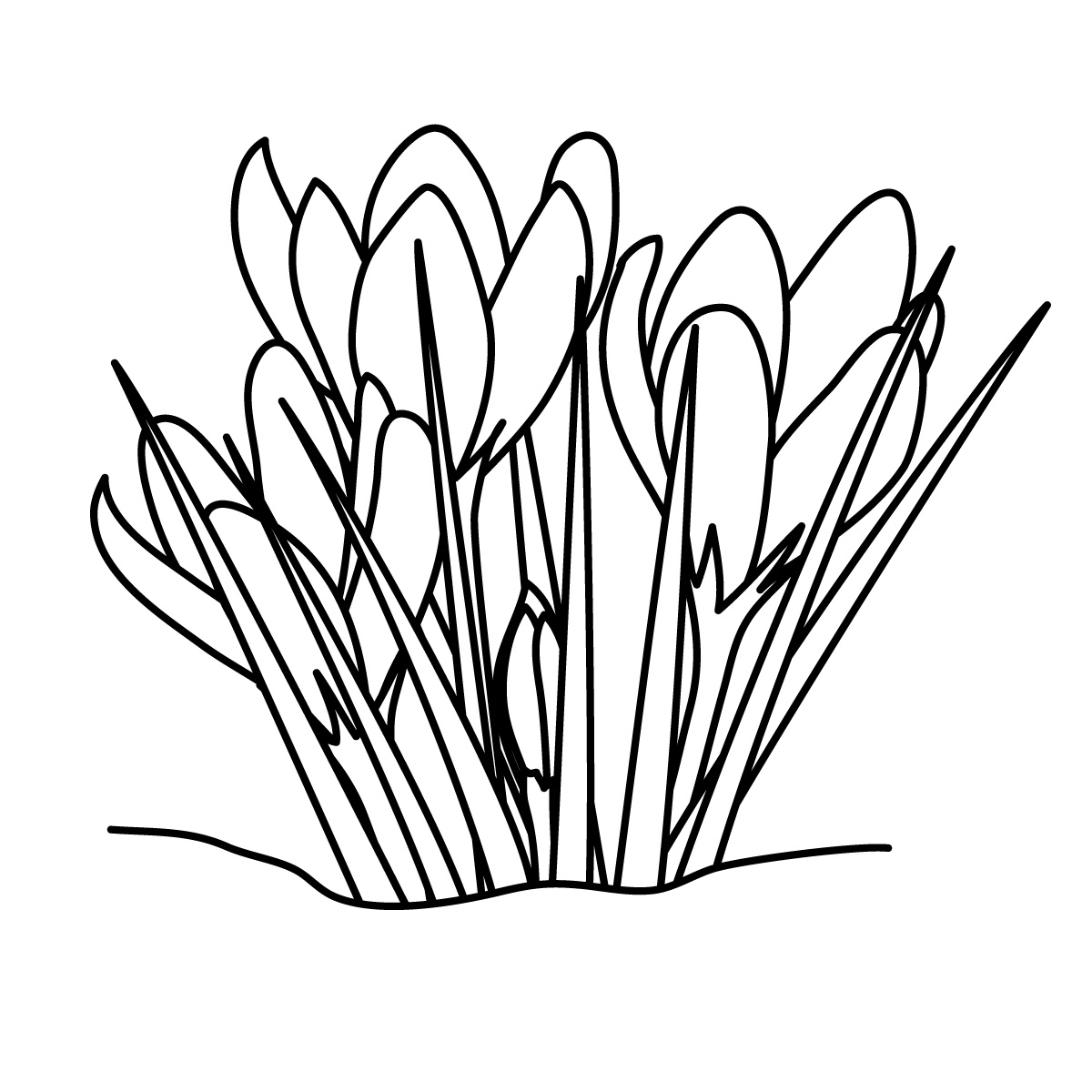 Potted Plant Clipart Black And White