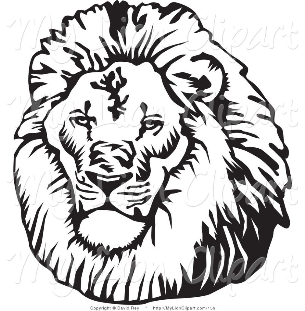 medium resolution of clipart lion