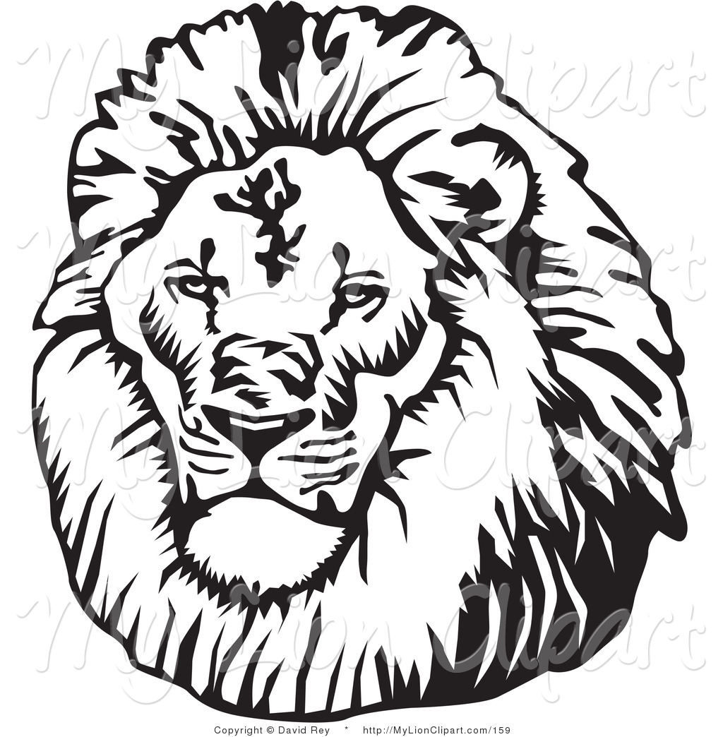 hight resolution of clipart lion