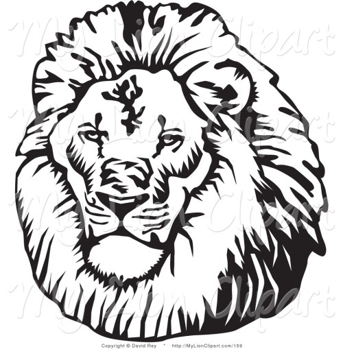 small resolution of clipart lion