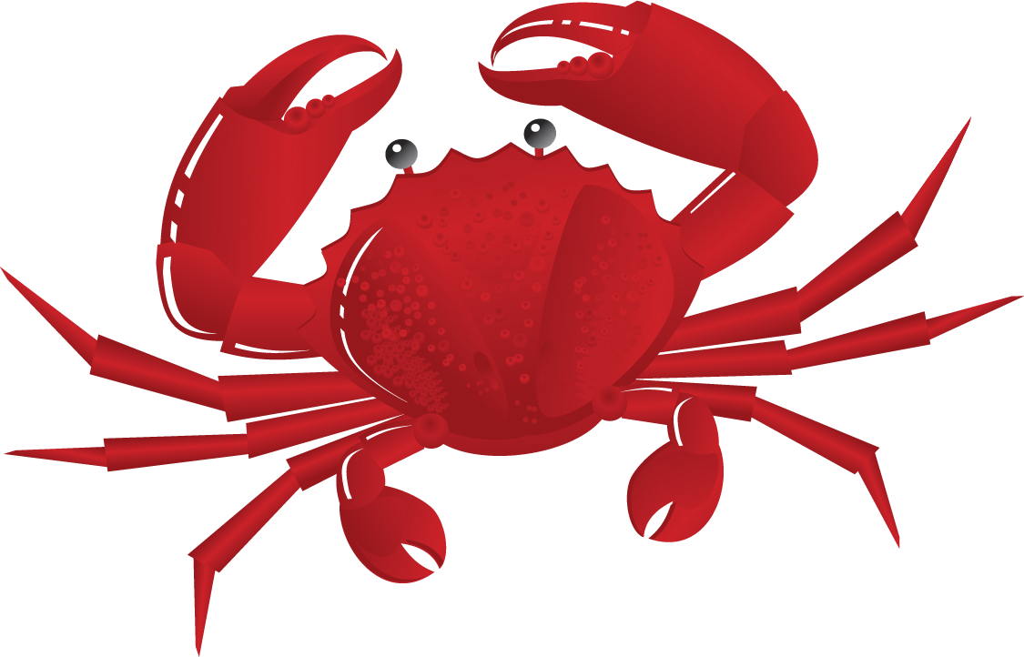 hight resolution of crab clipart