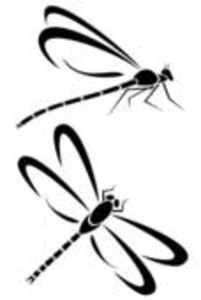 dragonfly outline clipart